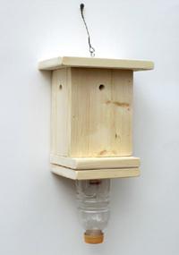 carpenter bee trap