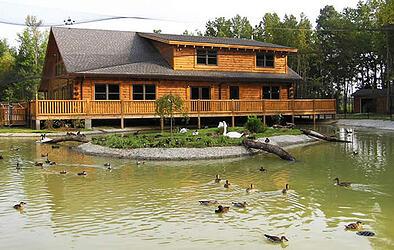 Log Cabin Commercial building International Aviary