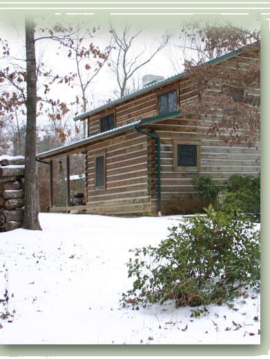Custom Log Home Exterior View