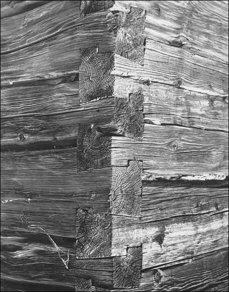 old log home wall