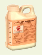 mold-buster